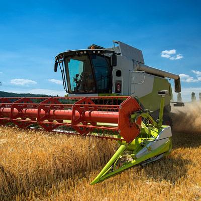 Landwirtschaft und Agrarwirtschaft