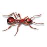 Ameisenbekämpfung für Stuttgart